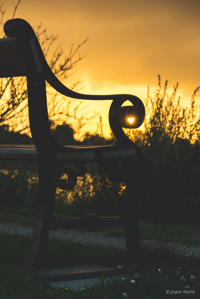 Bench sunset